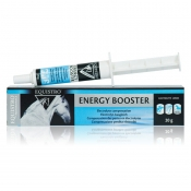 ENERGY BOOSTER 10 x 20g